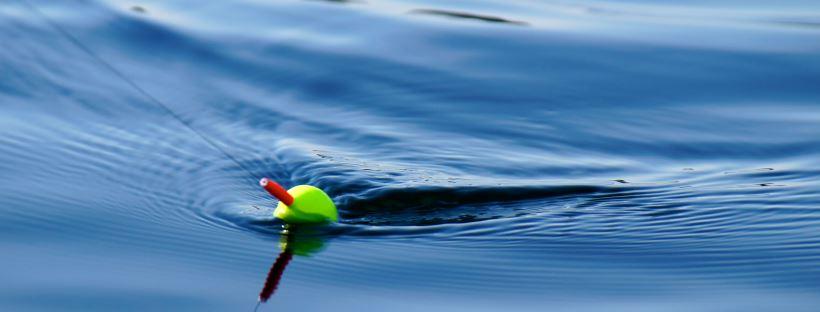 Phishing Lure